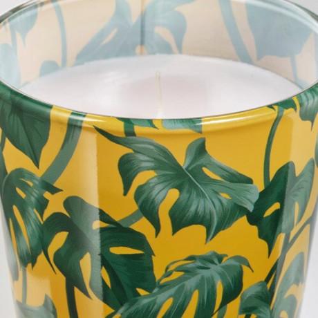 Неароматич свеча в стекл подсвечн АВЛОНГ Монстера, лист зеленый фото 0