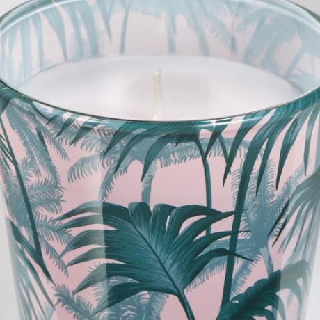 Неароматич свеча в стекл подсвечн АВЛОНГ пальмовый лист зеленый фото 0